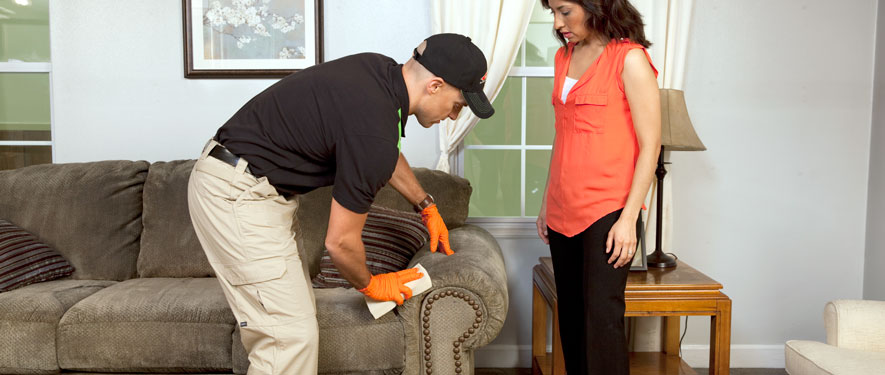 Springfield, VA carpet upholstery cleaning