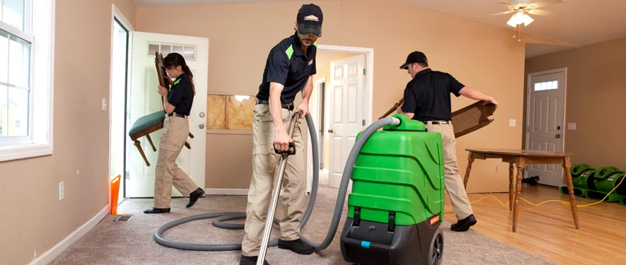 Springfield, VA cleaning services
